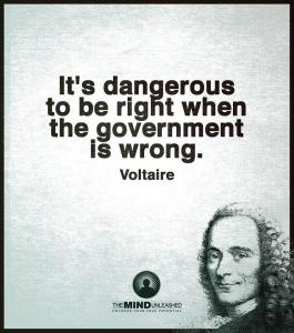 Voltaire on Govt