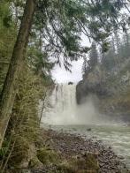 Falls through tree
