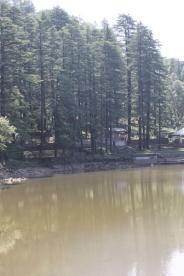 Dal Lake edge