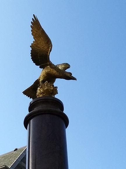 Ed- BC Eagle CU