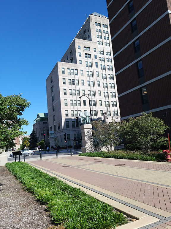 Ed-Loyola pathway